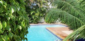 pool amnd tropical trees